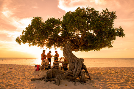 EAGLE BEACH, ARUBA - MARCH 15, 2017: Sunset along beautiful Eagle Beach Aruba with visitors and divi divi tree in view.