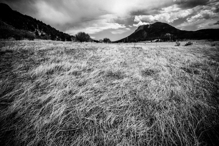Black and white View from Rocky Mountain National Park in Colorado with mountains in the background of grassy meadow.
