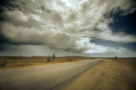 Desolate desert road with dramatic clouds in sky and cactus Stock Photo