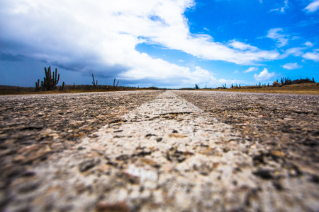 Dividing line on rough surface desolate desert road with cactus and blue sky from low angle