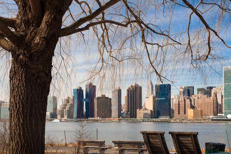 New York City skyline seen through tree at Gantry State Park in Long Island City Queens looking towards Manhattan Stock fotó