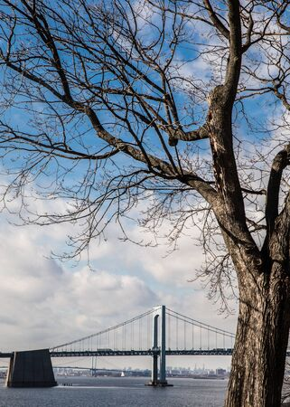 View of Throgs Neck Bridge and Long Island Sound seen from Bayside Queens toward the Bronx, New York City with bare tree in foreground Stock fotó