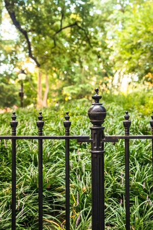 Wrought iron fence against park with green bushes and trees Stockfoto