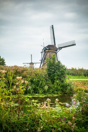 View of traditional Dutch Windmill and landscape seen from Kinderdijk Netherlands Stockfoto - 131903829