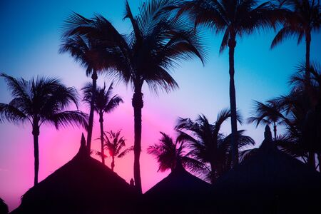 Colorful Caribbean graphic image with vibrant sky and silhouettes of palm trees and grass huts 版權商用圖片