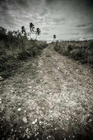 Rural dirt road through tropical Caribbean island landscape seen from Puerto Rico 免版税图像 - 164138899
