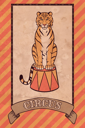 Vintage circus illustration, tiger