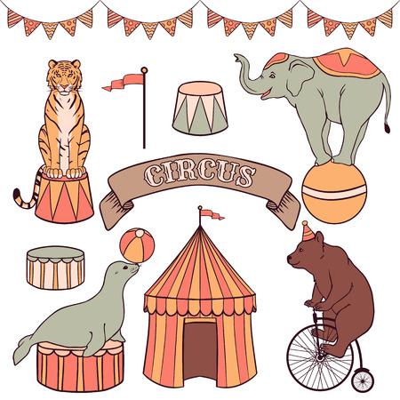 circus artist: Cute circus animals set  tiger, elephant, seal, bear