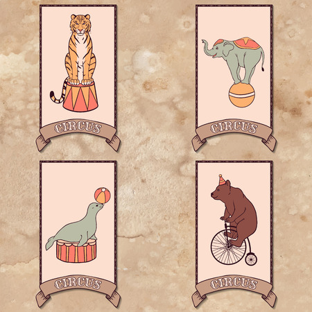 Set of circus animals  tiger, elephant, seal, bear Vector