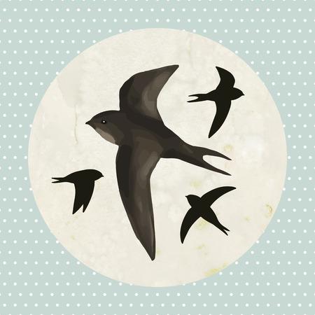 martinet: Martinets de vol sur fond vieux papier