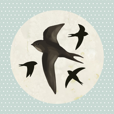 Flying swifts on old paper background
