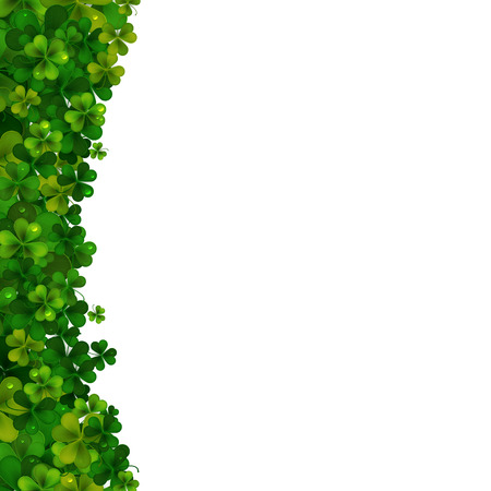 shamrock clovers: Saint Patricks Day vector background, realistic shamrock leaves