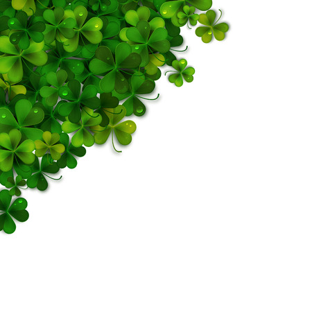 shamrock: Saint Patricks Day vector background, realistic shamrock leaves