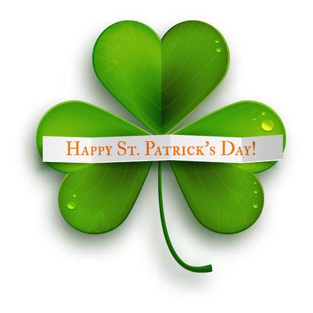 shamrock clover leaf: Saint Patricks Day vector greeting card, realistic shamrock leaves isolated on white