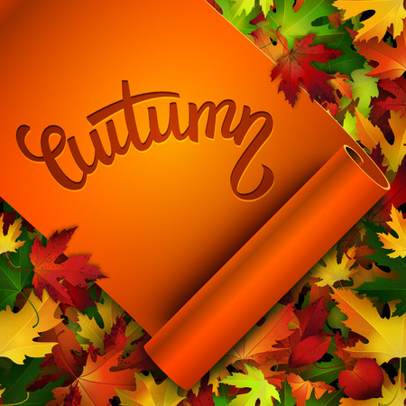 hand written: Autumn vector card, hand written text on realistic ribbon, colorful autumn leaves background