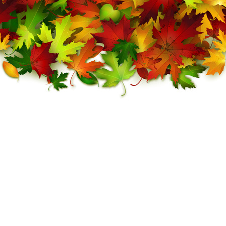 colorful frame: Vector background with colorful autumn leaves, card template, natural backdrop