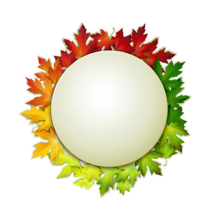 Vector banner and colorul autumn leaves, card design, natural backdrop