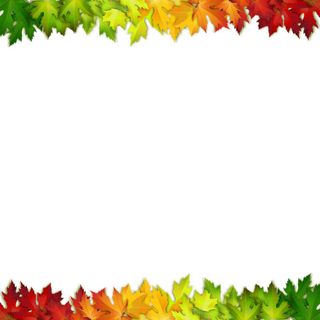 fall leaves: Vector background decorated with colorful autumn leaves, card, banner