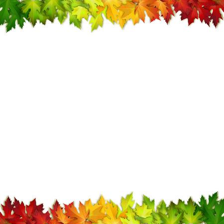 marco madera: Vector de fondo decorado con hojas de colores de oto�o, tarjeta, bandera
