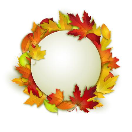 marcos redondos: Tarjeta del vector con las hojas de otoño de colores y la bandera blanca para su diseño