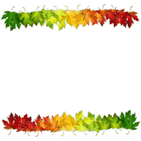 Vector background decorated with colorful autumn leaves, card, banner