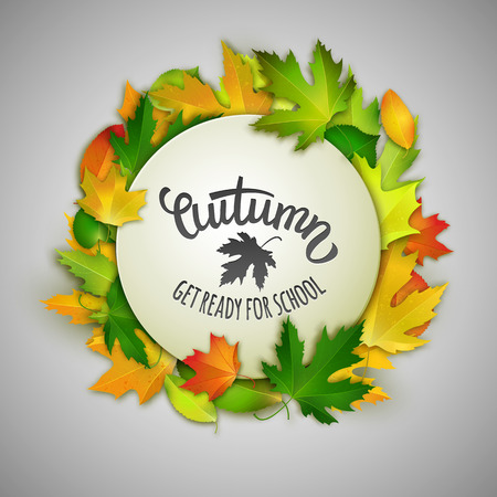 white back: Autumn back to school vector illustration, white banner with colorful maple leaves