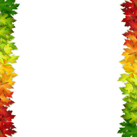 leaf: Vector background decorated with colorful autumn leaves, card, banner