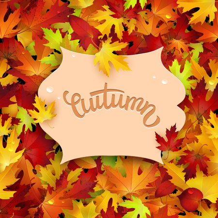 Vector illustration with colorful autumn leaves, card template, natural backdrop Illustration