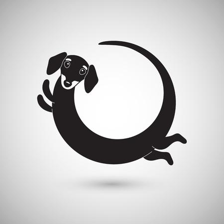 Cute funny dachshund dog, round logo, vector illustration