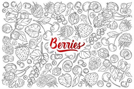 Hand drawn berries set