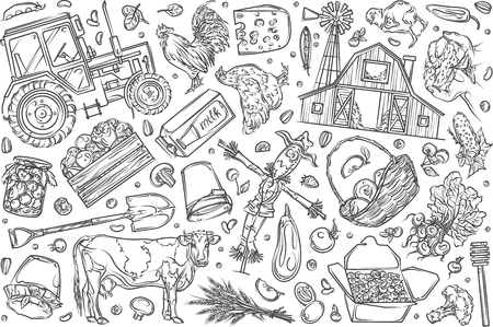 Hand drawn organic farming and food set doodle vector illustration background
