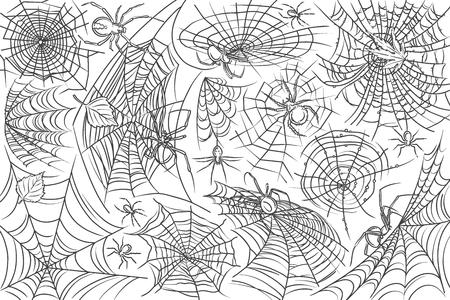 Ragno e web disegnati a mano. Ragnatela e ragno, simboli di orrore pericolo doodle set sfondo danger