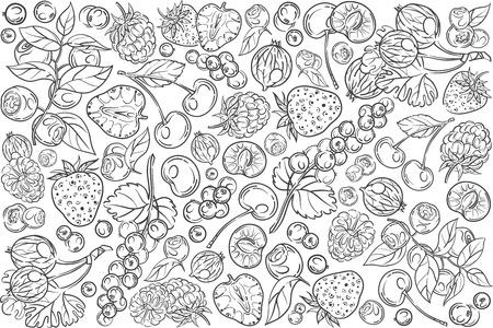 Hand drawn different berries. Cherry, strawberry, raspberry, blackberry etc doodle set background