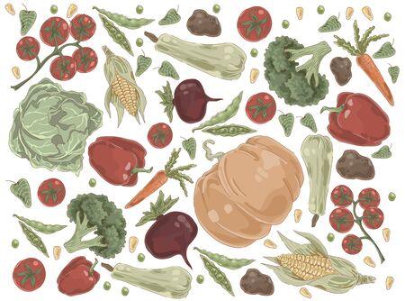 Natural vegetables, pumpkin, cabbage, tomatoes, paprika, broccoli, corn, carrot, beetroot, potatoes, organic nutrition set