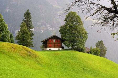 Little house and the green field with the mountain as background in the rainy day. Grindelwald, Jungfrau region, Switzerland