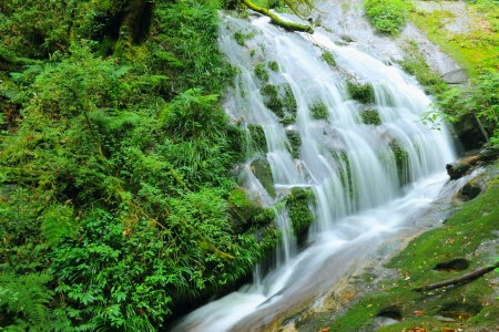 Landscape waterfall in the forest,Thailand  photo