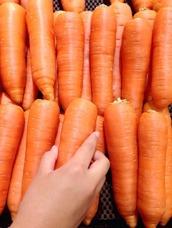 Woman to select  fresh carrots in the market.