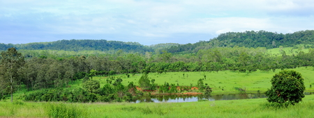 Panorama of the forest, green field and mountain landscape view in Northern of Thailand.