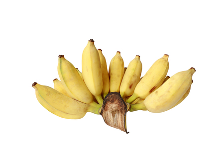 Close-up bunch of Cultivated banana isolated on white background. Standard-Bild