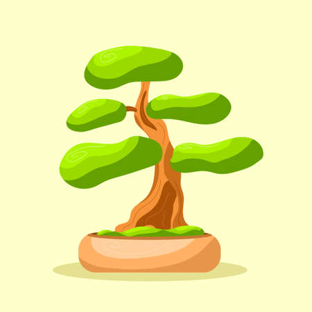 Bright isolated bonsai tree in the pot. Small tree. Vector isolated. Flat style