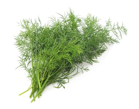 Bunch of green dill isolated on a white background.