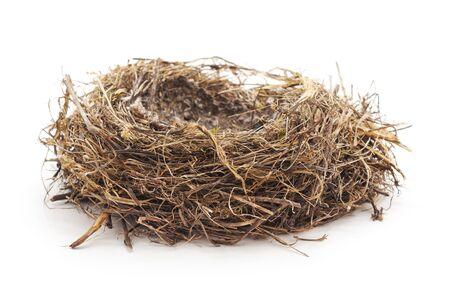 Abandoned bird nest isolated on white background. Фото со стока