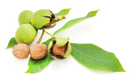 Group of green nuts isolated white background.