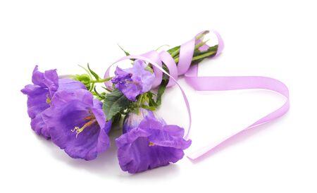 Beautiful purple foxglove isolated on white background.
