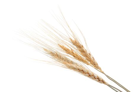 A bunch of grains is isolated on white background.