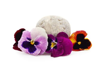 Three colorful violets isolated on a white background.