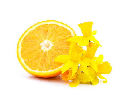 One sliced orange with daffodils isolated on white background. Stok Fotoğraf