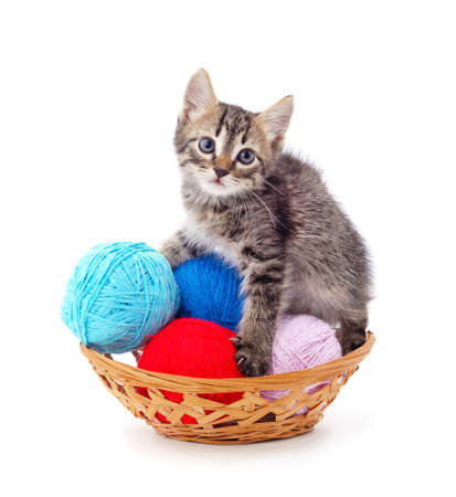Gray kitten with balls in a basket isolated on a white background.