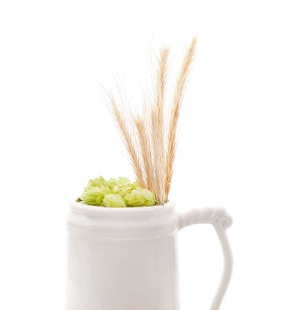 Hops and barley in a cup isolated on a white background.