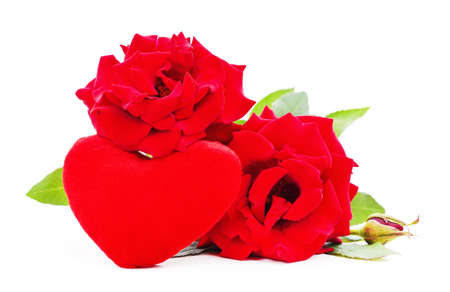 Beautiful red roses with a toy heart isolated on a white background.